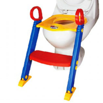 Potty Seat and ladder